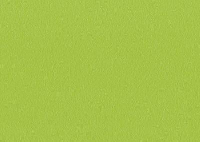 Grün TG 505