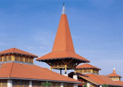 Picture1 - roof tiles