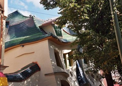 Picture6 - roof tiles